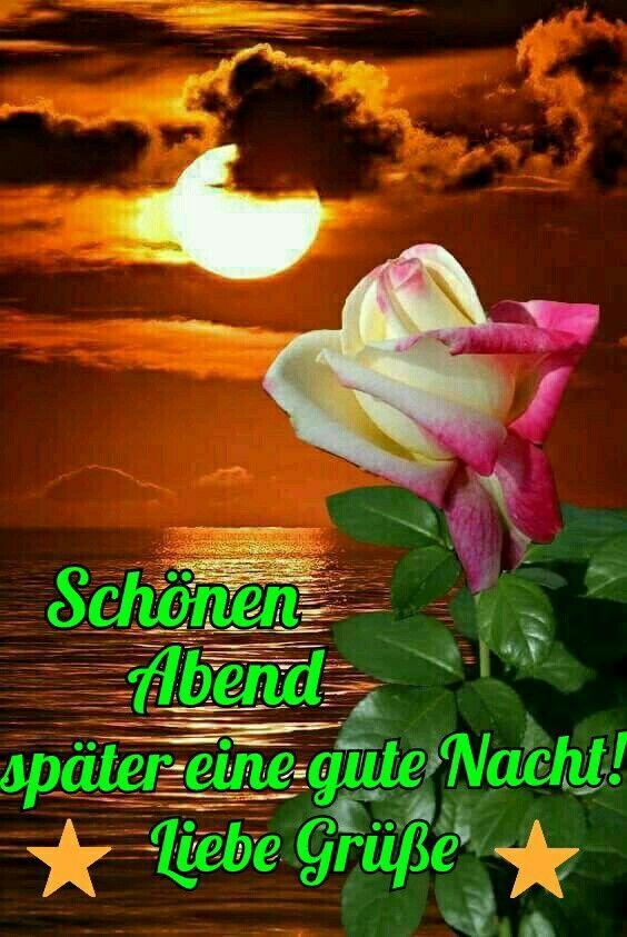 Wünsche Ich Dir Auchdaizo Gute Nacht Grüße Schönen