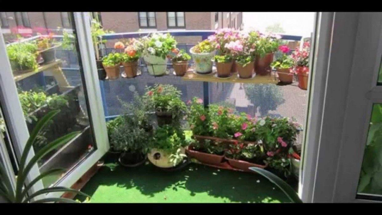 Indoor Vegetable Garden Ideas Friday, 23th January 23, 23:23