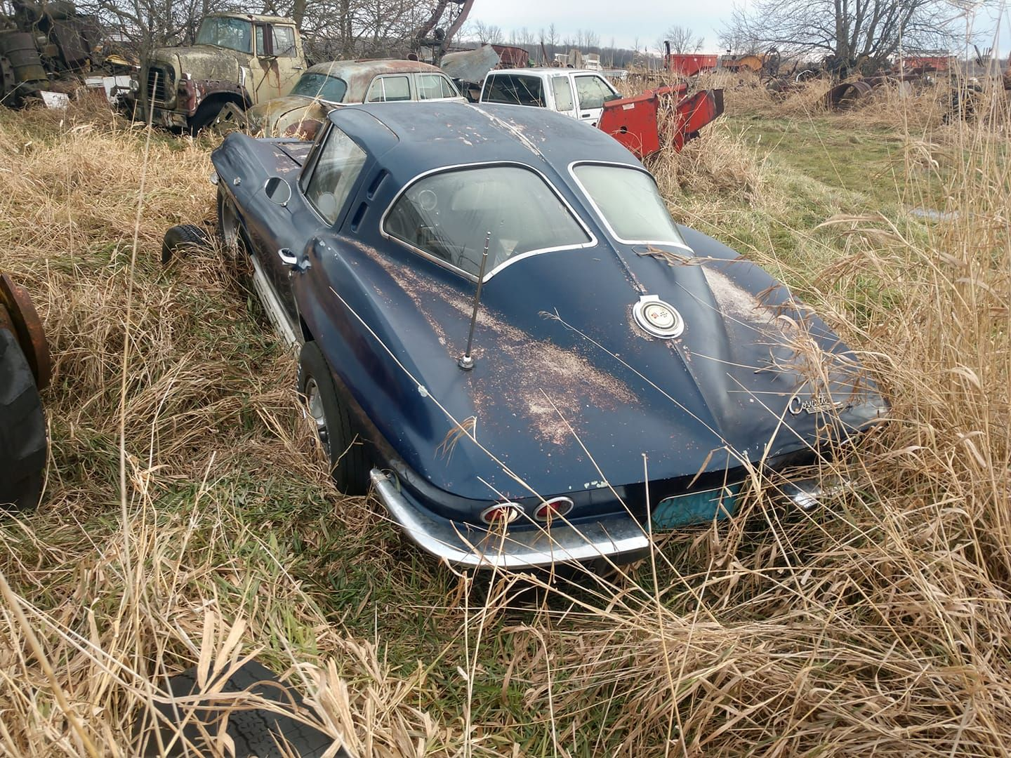 Found On Fb 01 2020 In 2020 Barn Find Cars Corvette Barn Finds