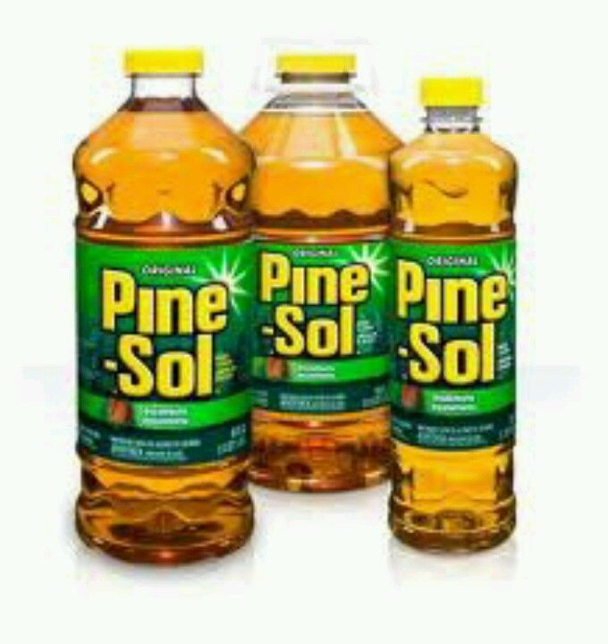 Use A Mix Of 50/50 Pine-sol And Water In A Spray Bottle To