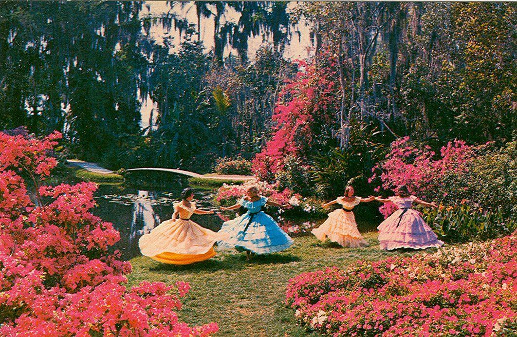 Cypress Gardens Fl Vintage Southern Belles Now