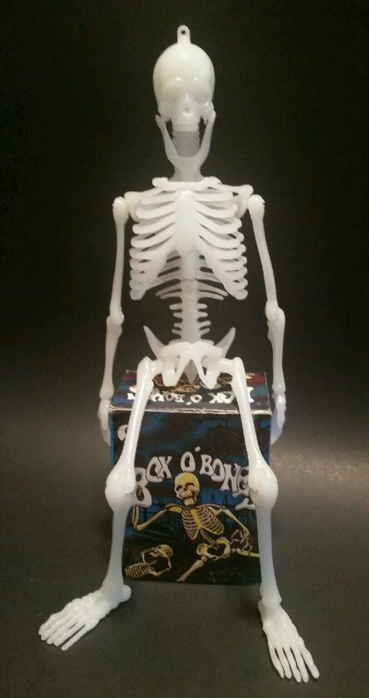 Box O Bones Plastic Miniature Skeleton Model Diorama Toy Complete In Box Skull Decor Skeleton Model Halloween Skeletons