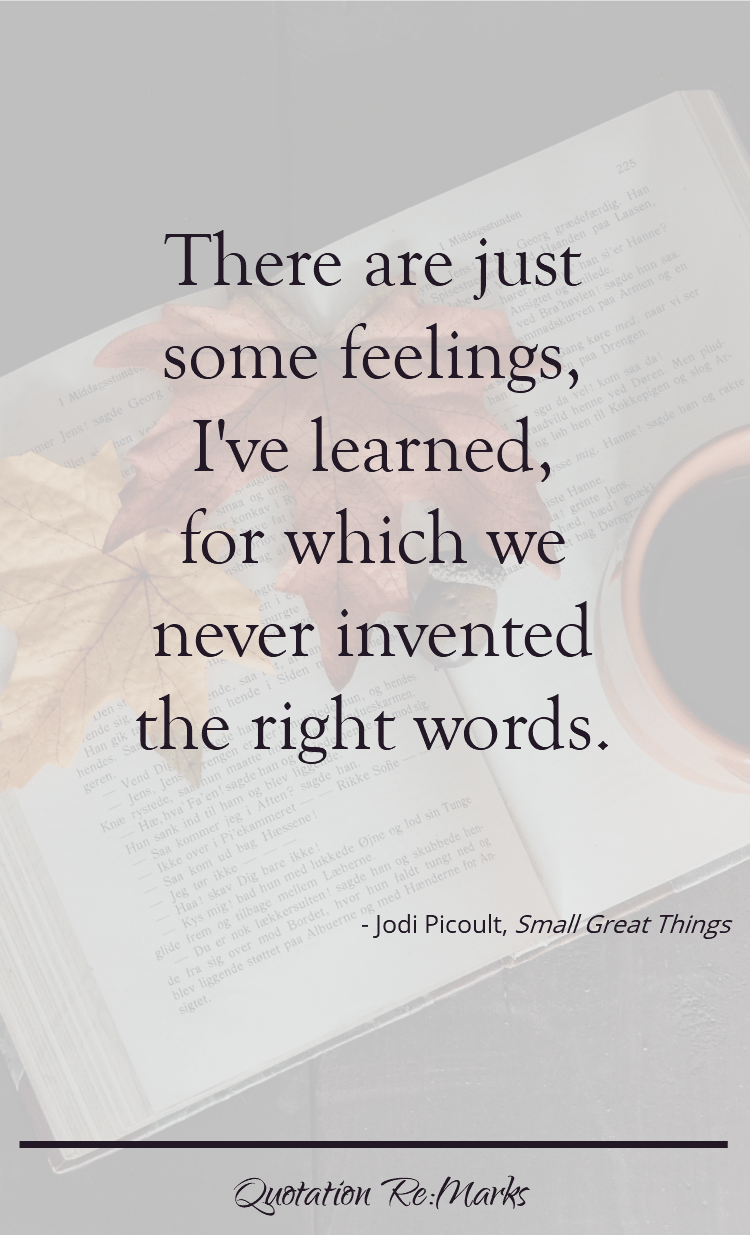 Small Great Things By Jodi Picoult A Review