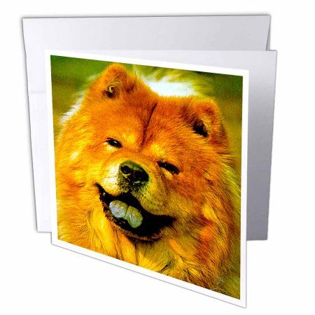 3dRose Chow Greeting Cards 6 X Inches Set Of 12