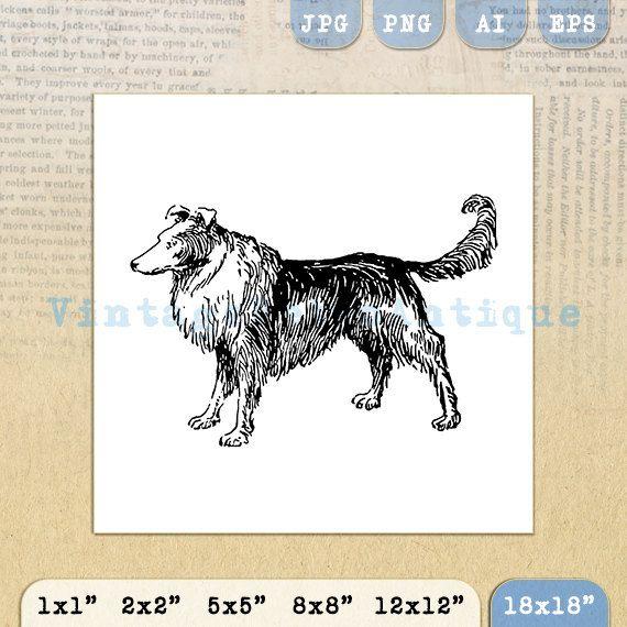 Colllie Dog Image Graphic Download by VintageRetroAntique on Etsy