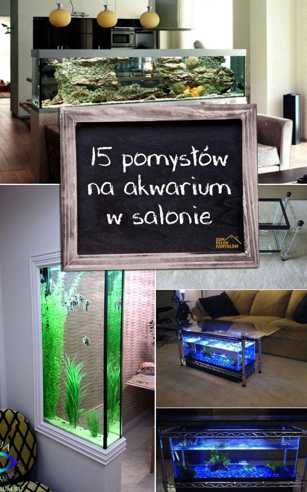 pomysłów na akwarium w salonie u zainspiruj siĘ terrarium