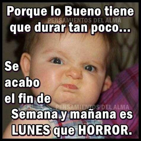 Imagenes De Humor Funny Baby Memes Fun Quotes Funny Funny Spanish Memes