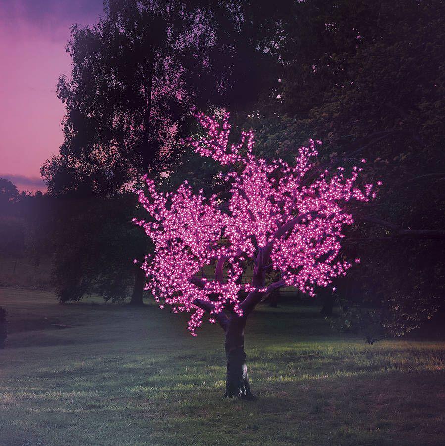 Illuminated Decorative Led Tree Led Tree Outdoor Lighting Outdoor