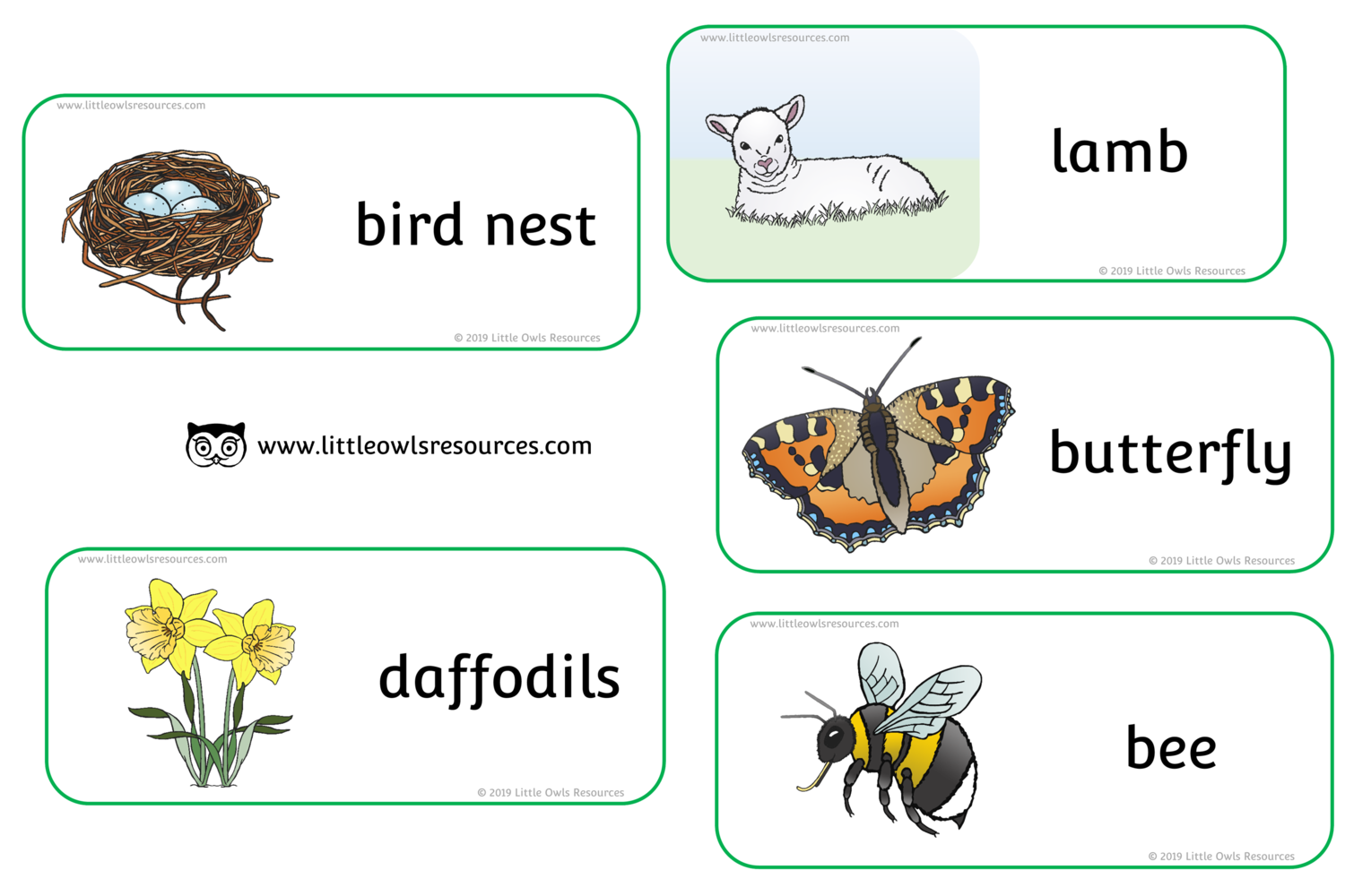 Free Spring Words Printable Early Years Ey Eyfs Resource