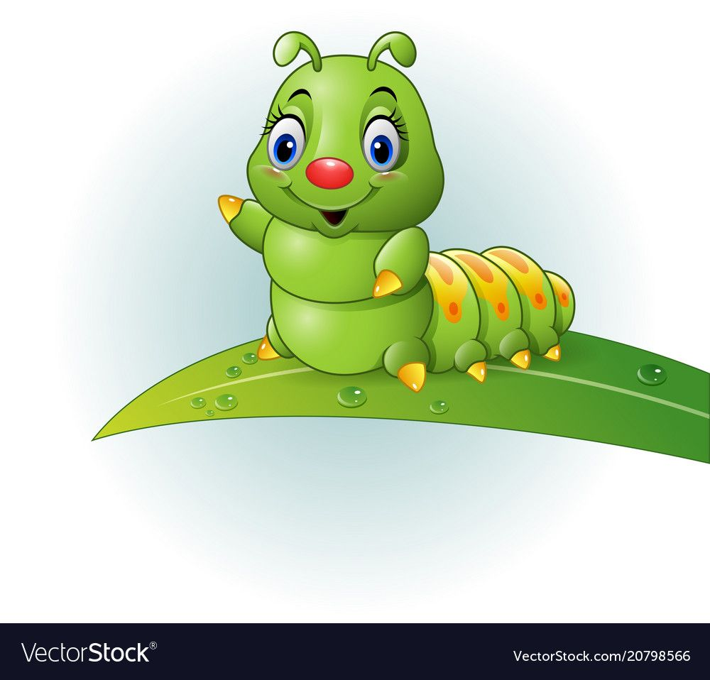 Vector Illustrations Of Cartoon Green Caterpillar On The Leaf Download A Free Preview Or High Quality Adobe Illustrator A Cartoon Caterpillar Cartoon Drawings