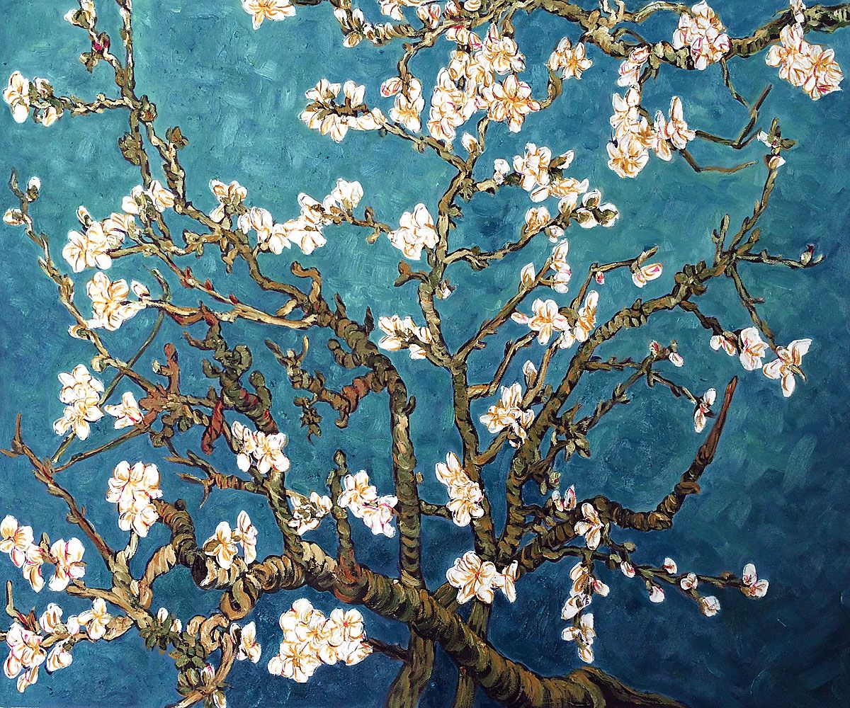 Branches Of An Almond Tree In Blossom Reproduction At Overstockart Com In 2021 Van Gogh Art Van Gogh Almond Blossom Fine Art Painting Oil