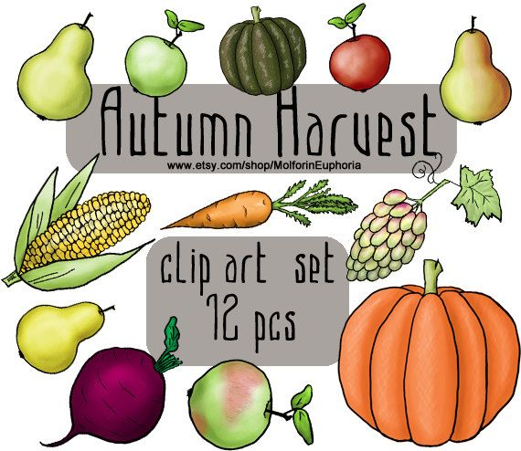Autumn Harvest CLIPART, fall garden, vegetables and fruits ...