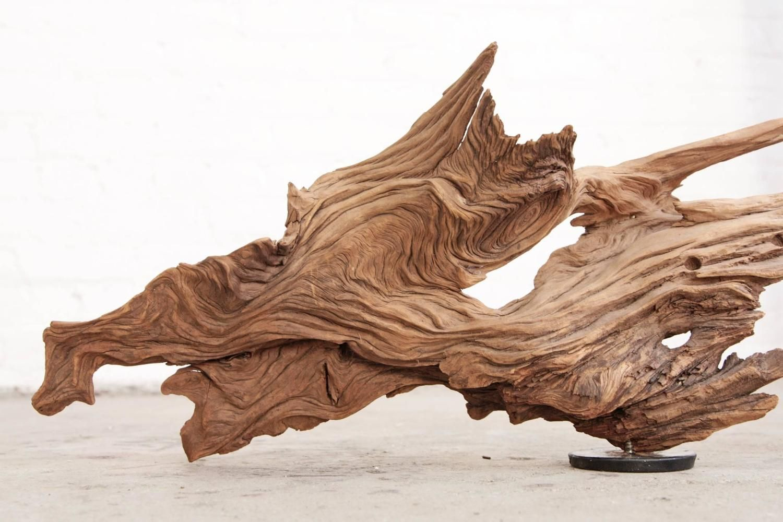 Driftwood Sculpture Organic Modern