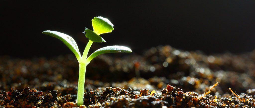 Pin on Entrepreneur Mindset