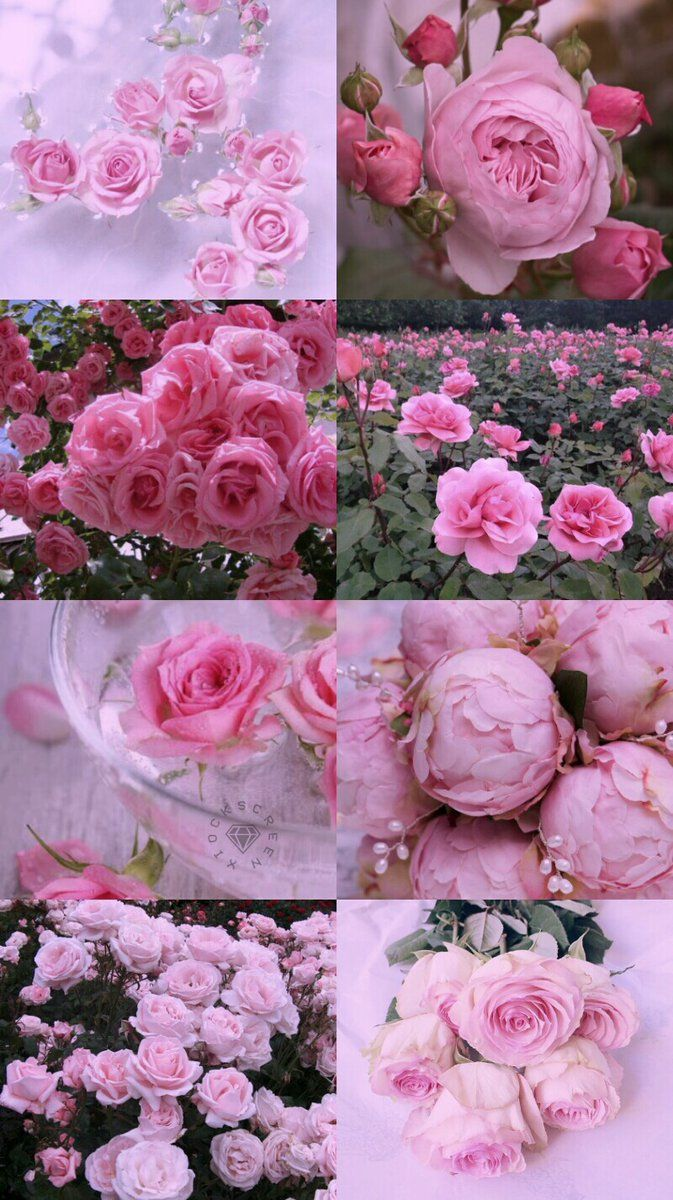 Black And Pink Aesthetic Pictures