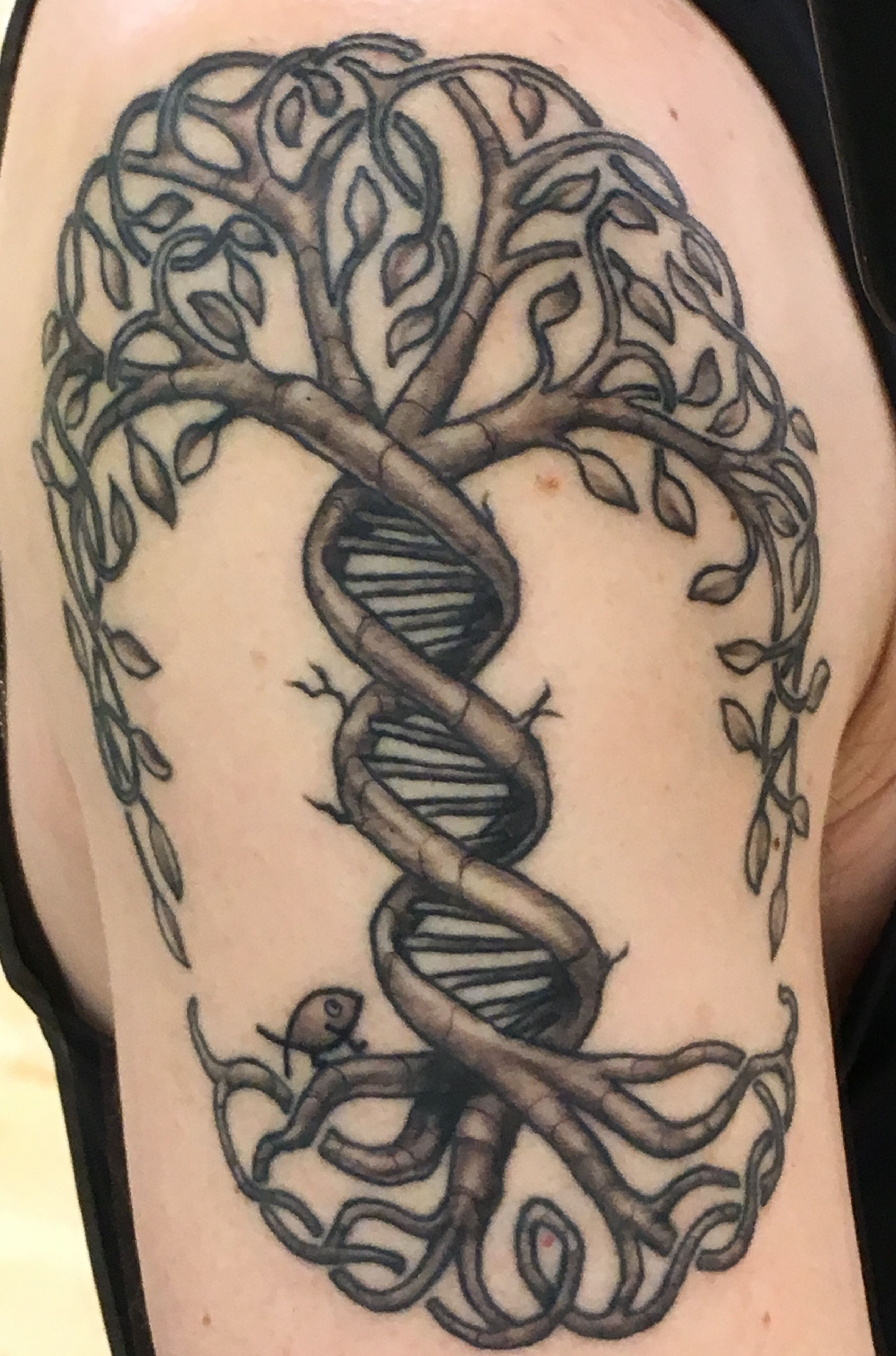 Evolution tree of life with DNA strand and Charles Darwin fish