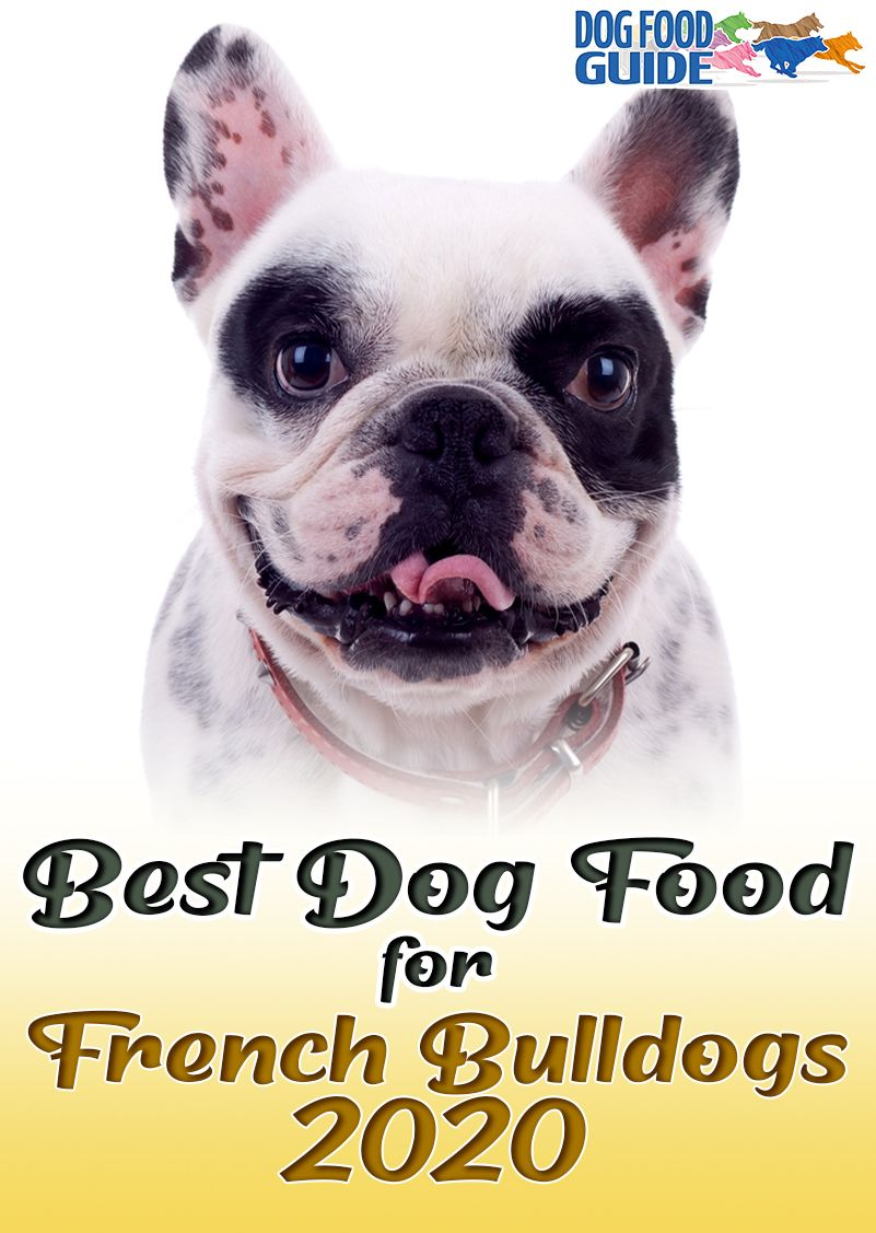 Best Dog Foods For French Bulldogs in 2020 Best dog food