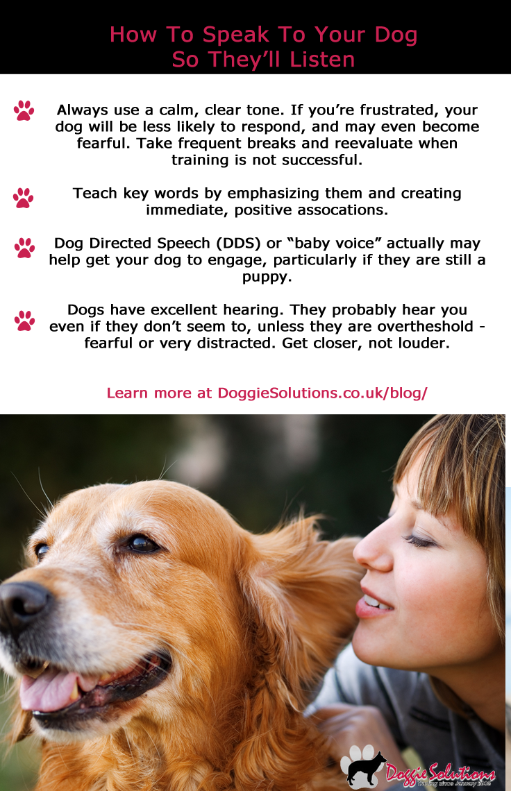 How To Speak To Your Dog So They Ll Listen At Doggie Solutions Online Pet Store Dog Training Obedience Dog Obedience Your Dog