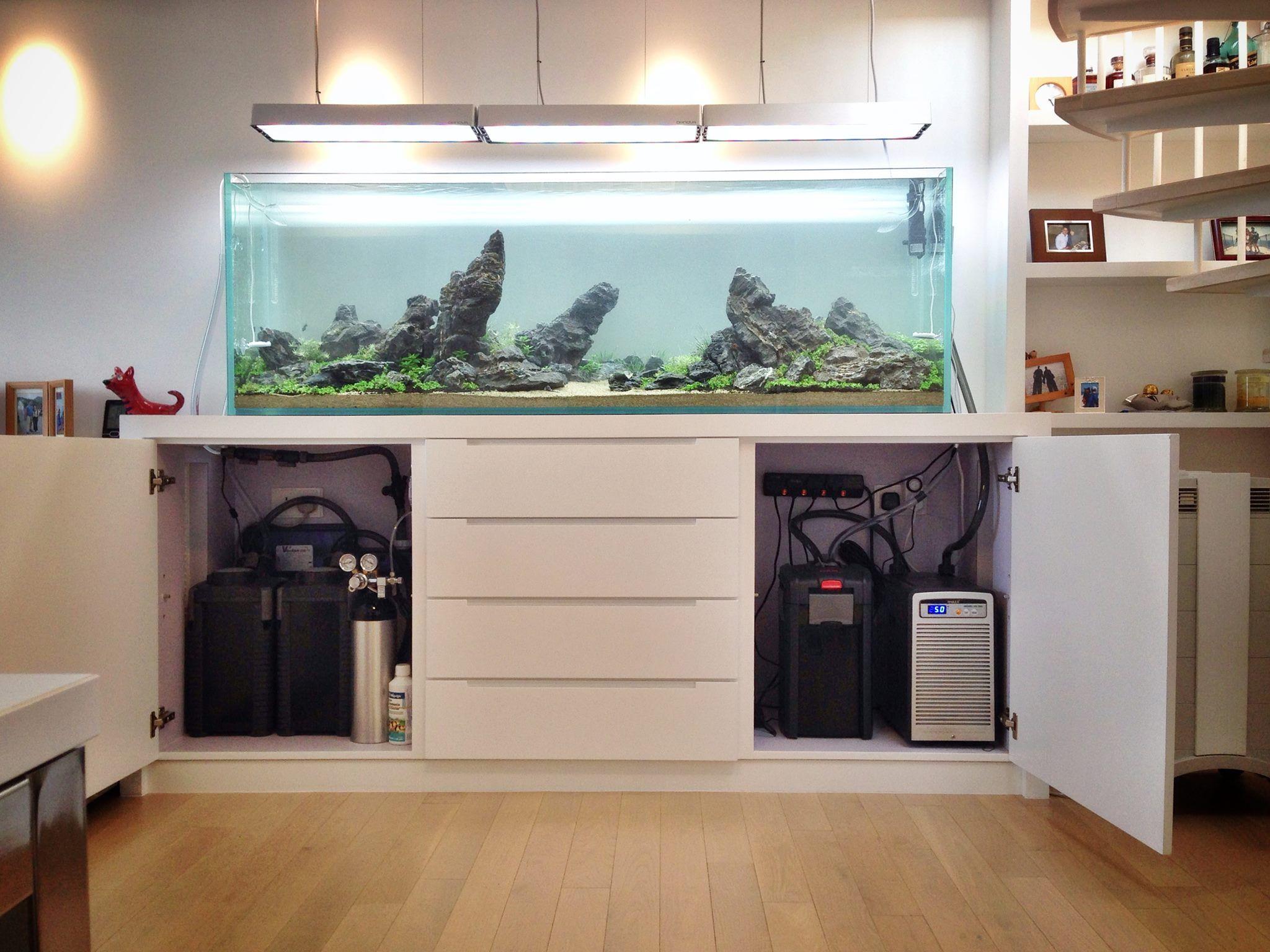 0d0357791850d646a11eb85b8784275c Frais De Aquarium Tropical Schème
