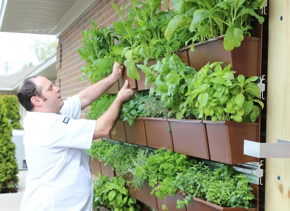 Grand Pines Chef Aaron Shapiro Adjusts A Planter On The