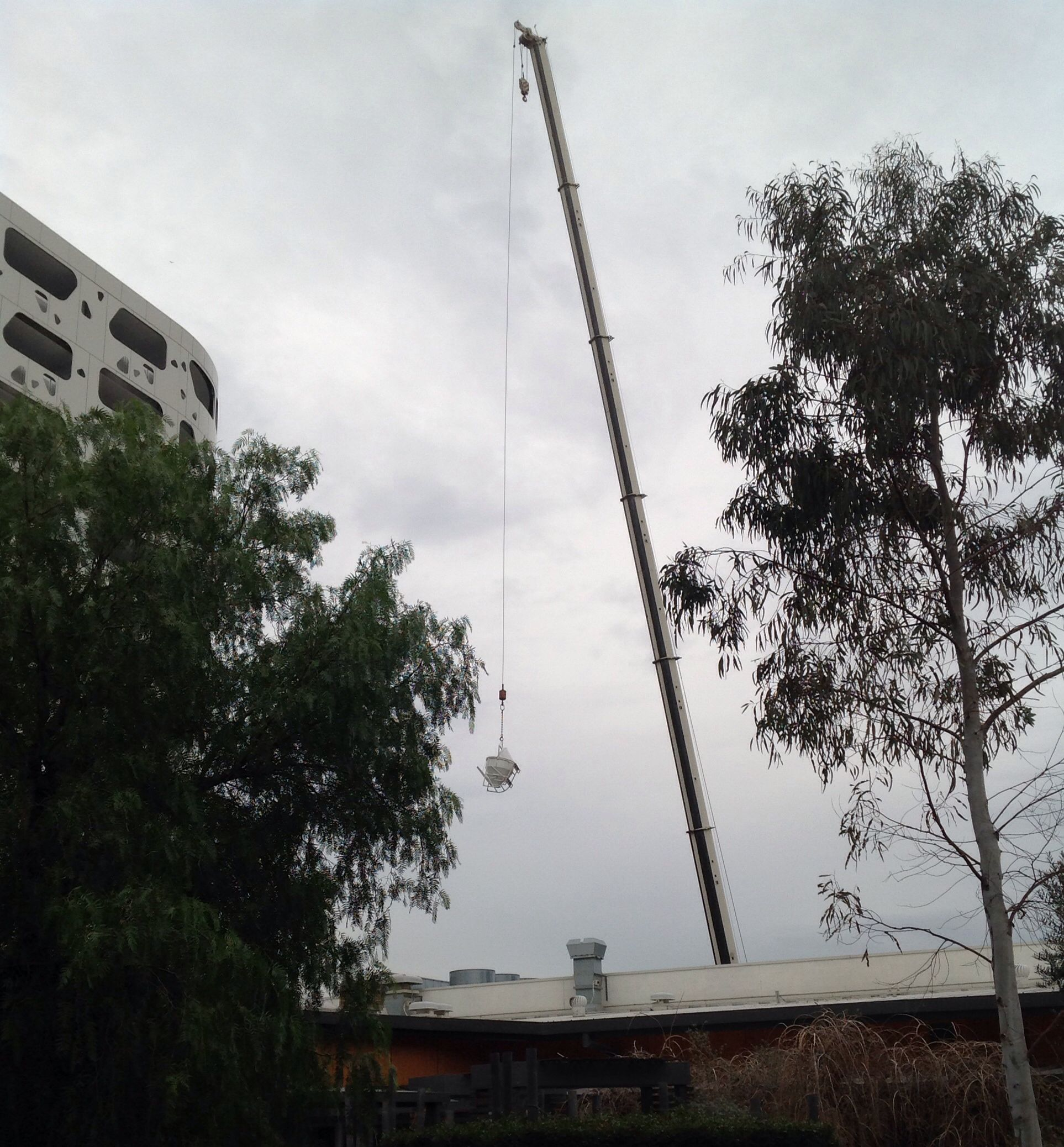 Yesterday We Were Very Excited To Notice A Crane Working