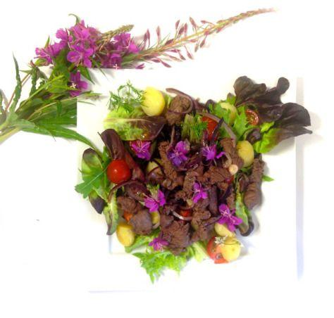 Maitohorsmankukka-teriyakifile-salaatti - Salaatti nro 19