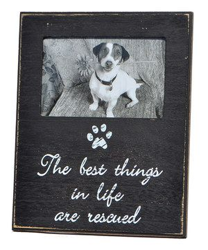 Loving This The Best Things In Life Are Rescued Frame On Zulily
