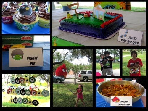 Angry Bird Themed Party!