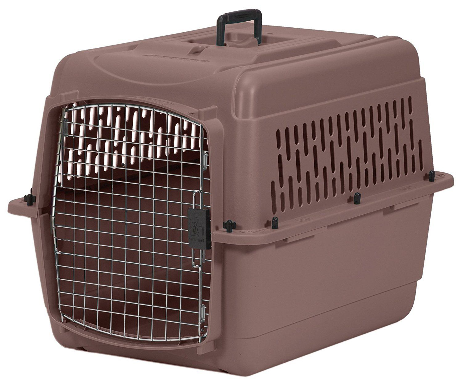 Aspen Pet Pet Porter Plastic Kennel *** Check this awesome