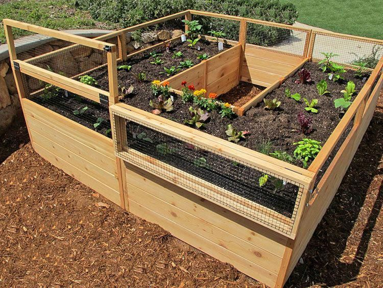 Cedar Complete Raised Garden Bed Kit 8' x 8' x 20