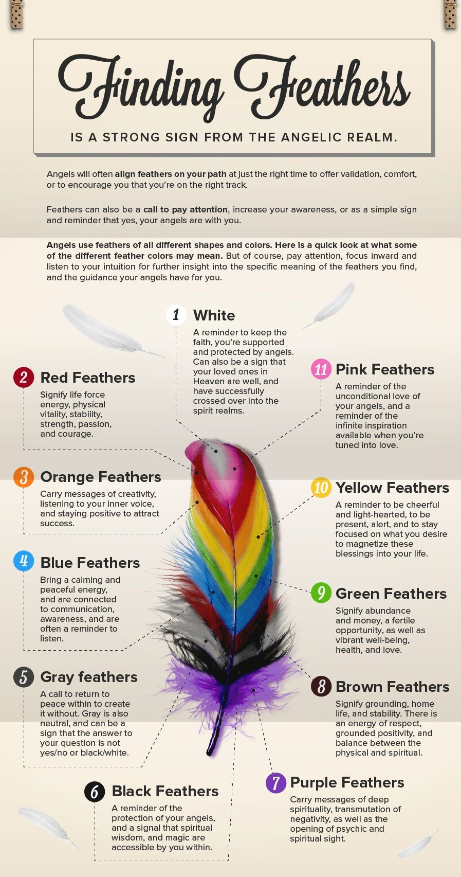 Authentic Psychic Readings By Finding Feathers Feather Meaning