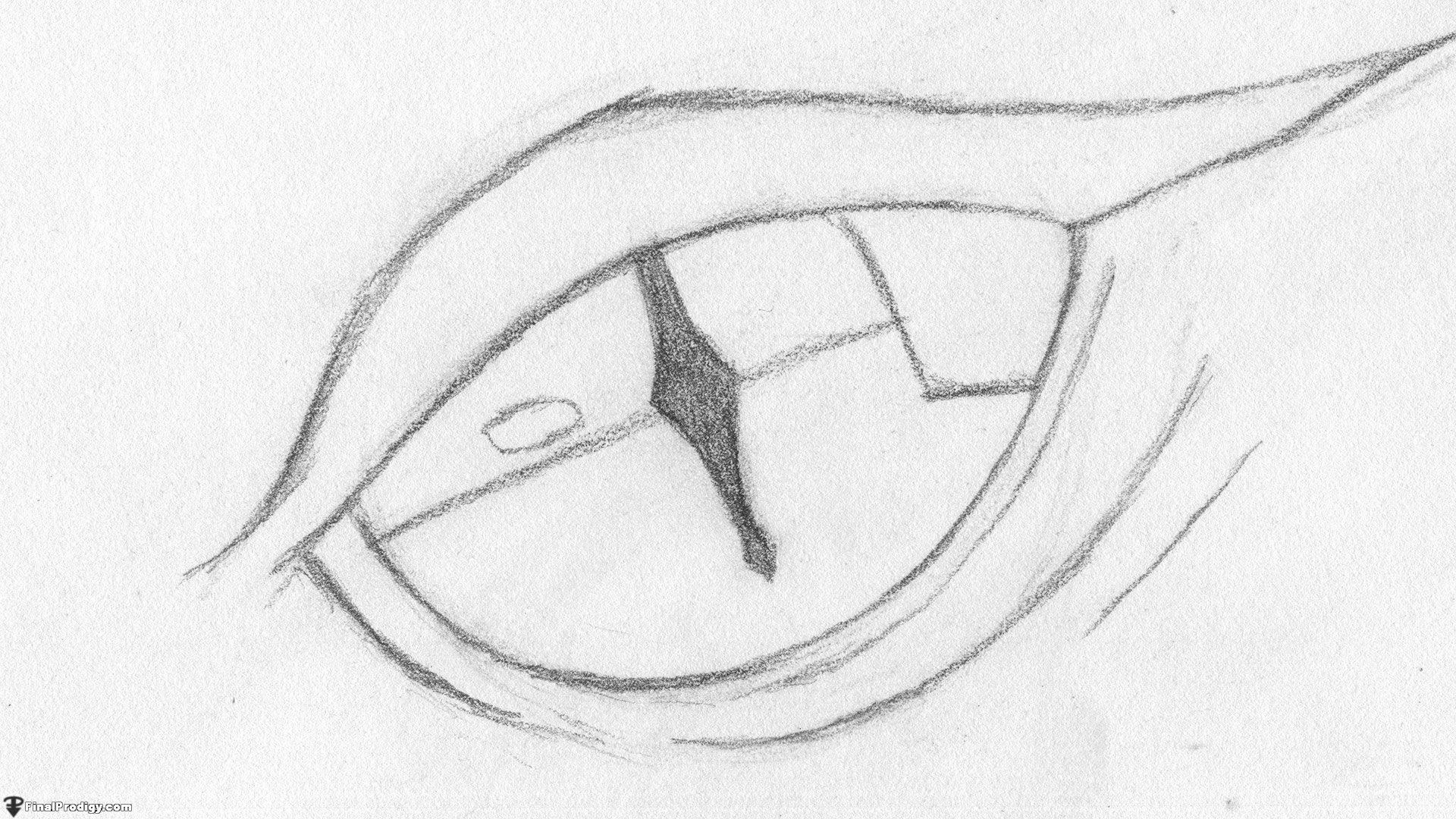 How To Draw A Dragon Eye Smaug S Eye Finalprodigy Com Things I