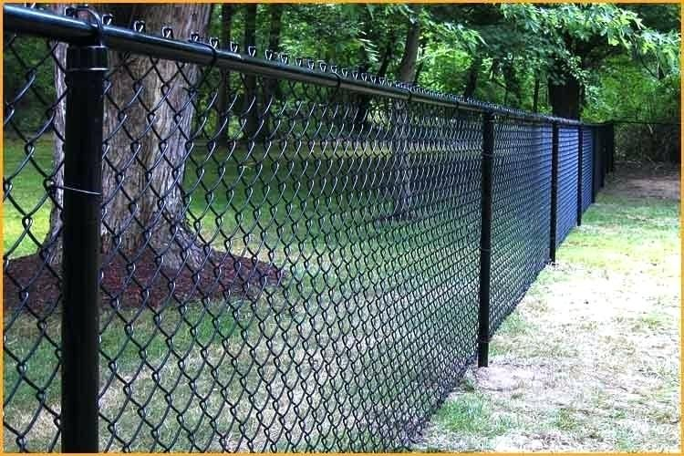 Fresh Cyclone Fence Gate Images Cyclone Fence Gate For Cyclone Fence Gate Latch Unique Chain Link Fence Gate 3 Ft 5 In X 4 Ft 37 Chain Link Fence Swing Gate Wh