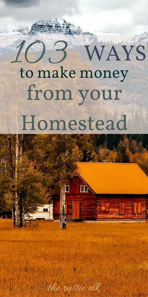 103 Ways to Make Money from Your Homestead, even a small ...