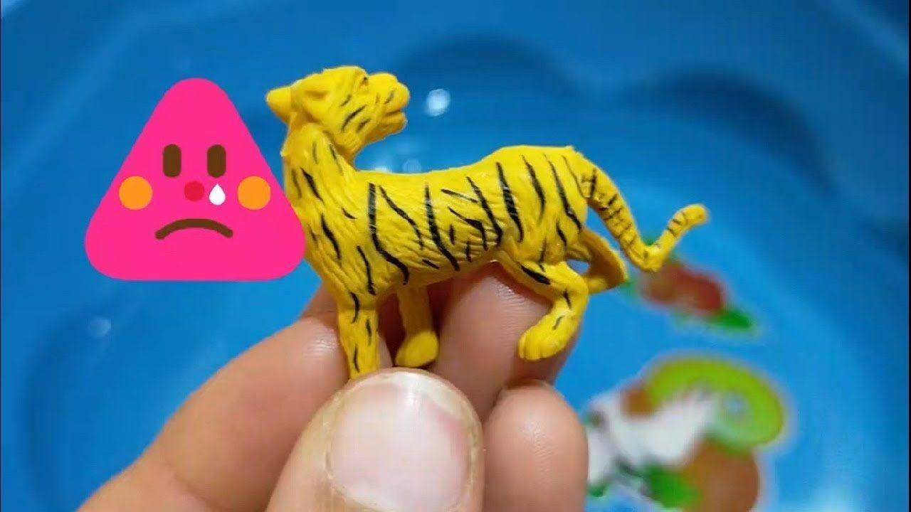 العاب اطفال كرتون اطفال عالم الحيوان للاطفال الصغار اسماء الحيوانات للاطفال Animal Farm Zoo Animals Ht Princess Barbie Dolls Baby Doll Play Fun Games For Kids