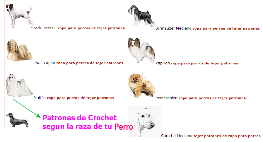 Vistoso Patrón De Crochet Para Suéteres Para Perros Motivo - Ideas ...
