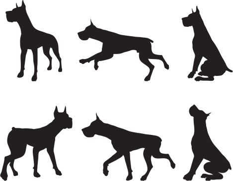 Great Dane Silhouette Clip Art Google Search Great Dane Dogs