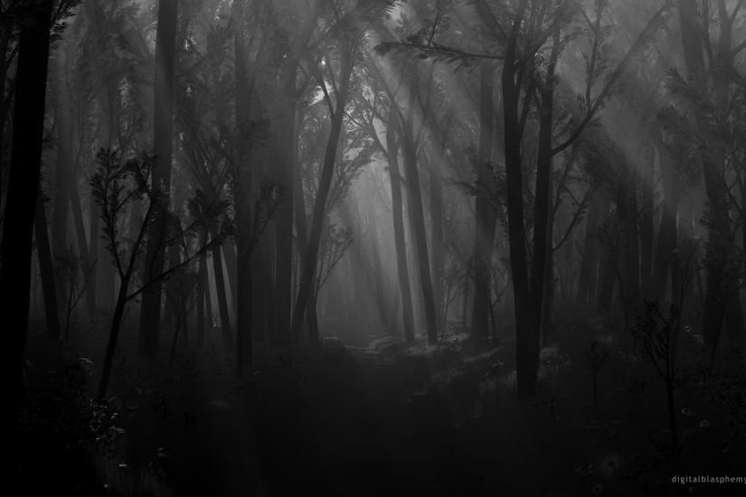 Dark Forest Wallpaper Download Free Hd Backgrounds For Desktop Mobile Laptop In Any Resolution Desktop Android I In 2020 Forest Wallpaper Dark Forest Dark Tree