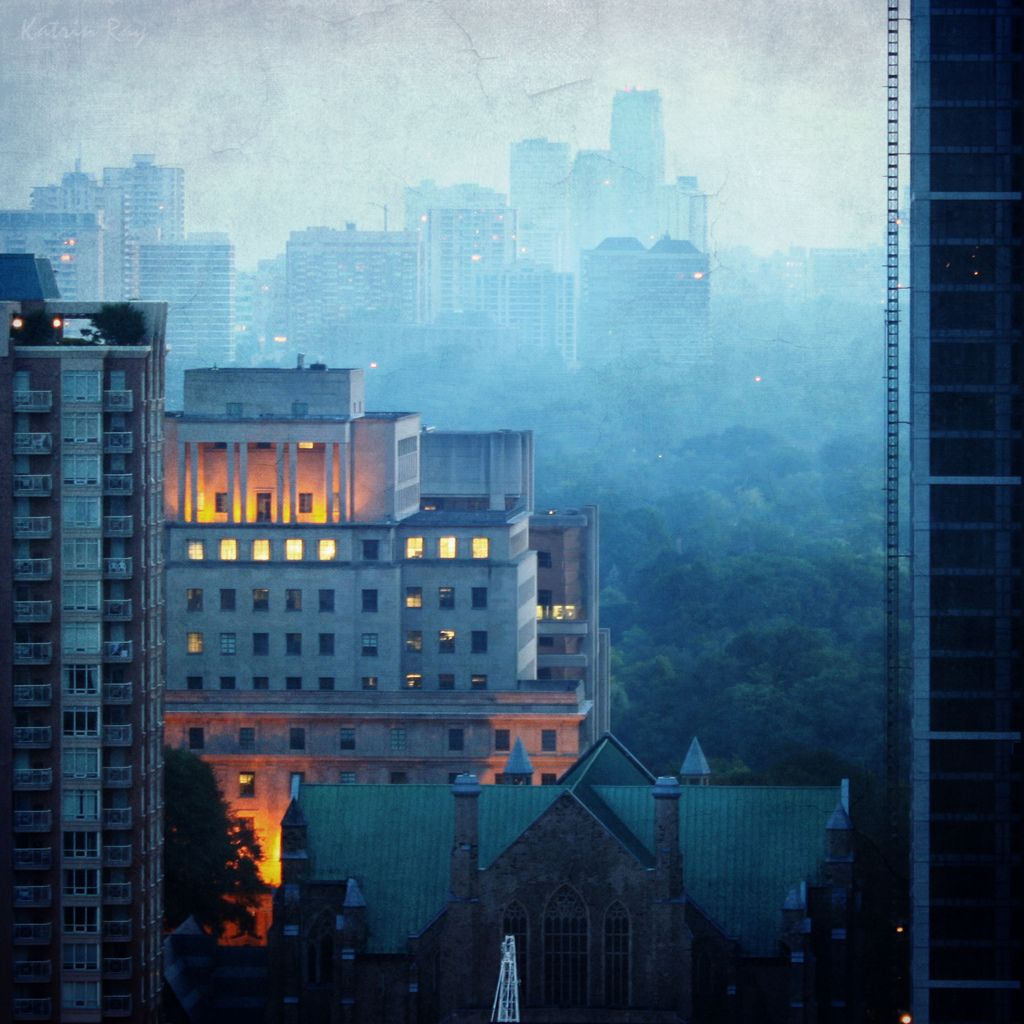 Urban City Photography 70 Dramatic Examples: Toronto's Mixed Forest. Misty Blue Morning