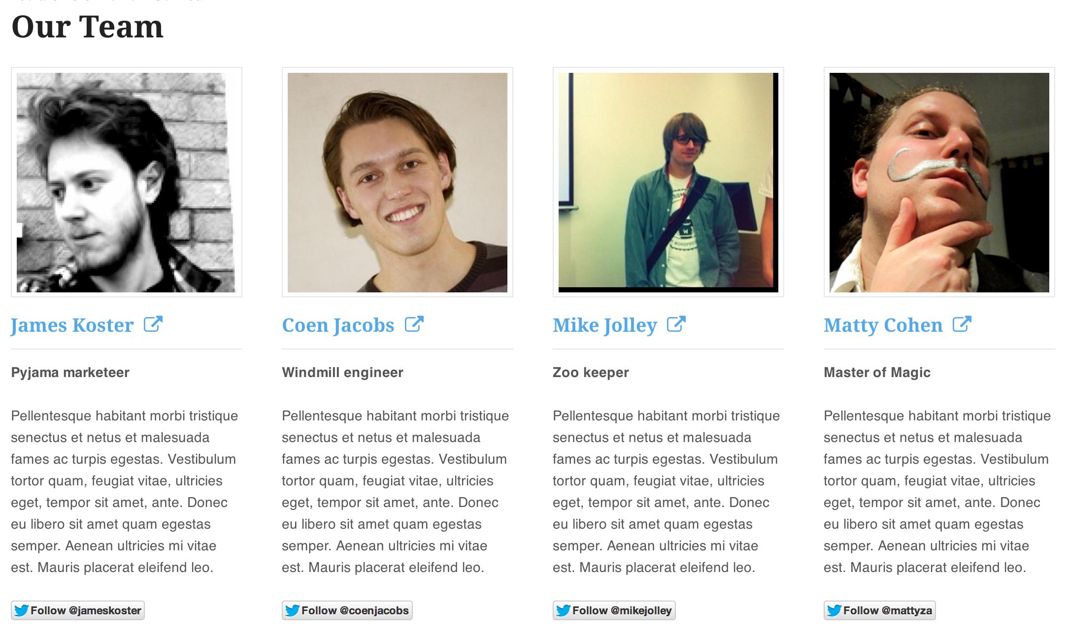 Display team member profiles | Work-Web, Marketing & Media ...