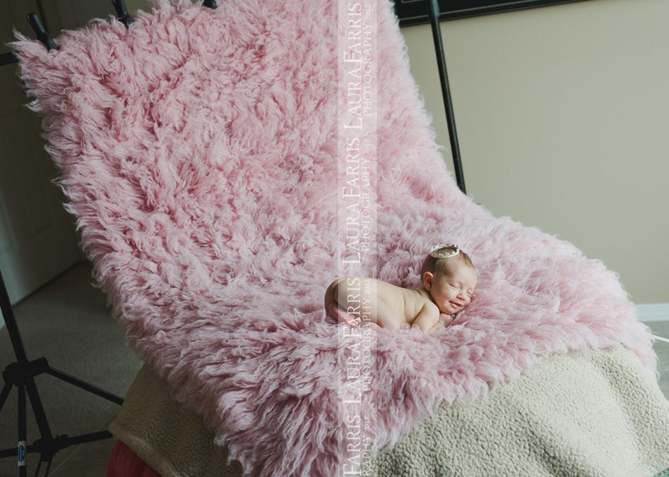 Laura Farris Is A Professional Newborn Baby And Maternity Photographer In The Boise Idaho Area