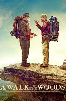 Grandes Amigos 2015 Online Películas De Aventuras Peliculas Ver Películas