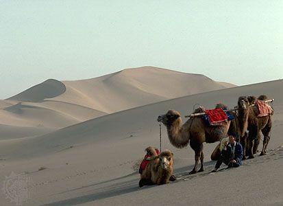Het is niet de woestijn in Marokko, niet in Egypte, het is de Taklamakan Desert in Xinjiang - Chinar