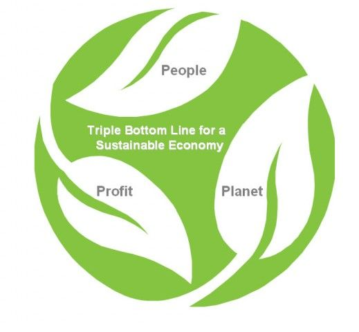 people planet profit - Google Search Health Equity + Built - profit & loss template free