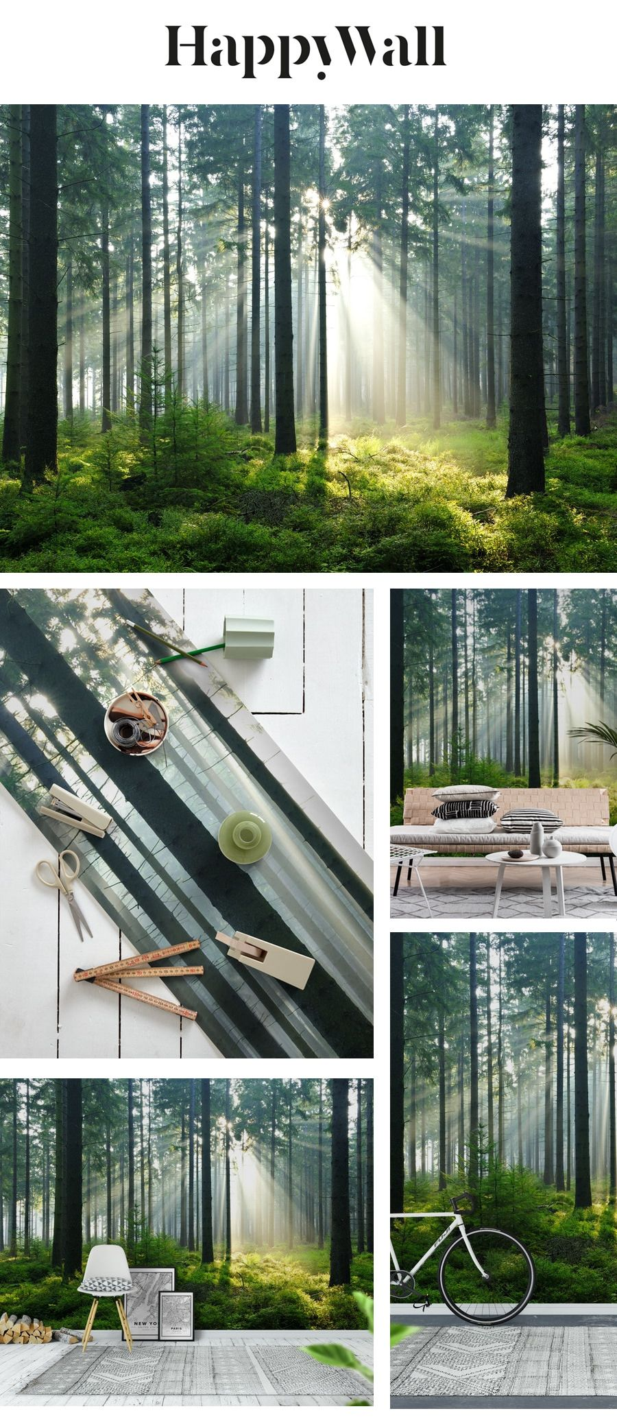 Enchanted forest Wall mural Forest wallpaper, Forest