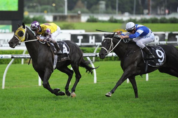 Memsie stakes betting line bovada betting line