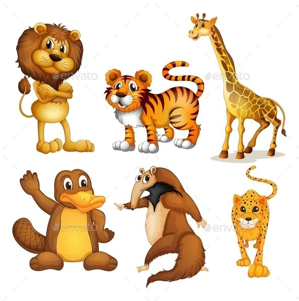 Different Kinds Of Land Animals Zoo Coloring Pages Cartoon Animals Cartoon