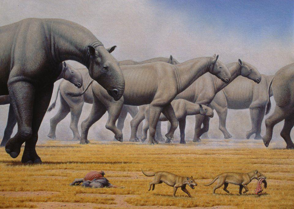 Paraceratherium by Mauricio Anton. Ancient animals