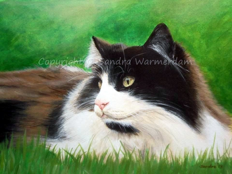 Longhair Cat in Grass, Original Painting, Acrylic on Paper, Realism