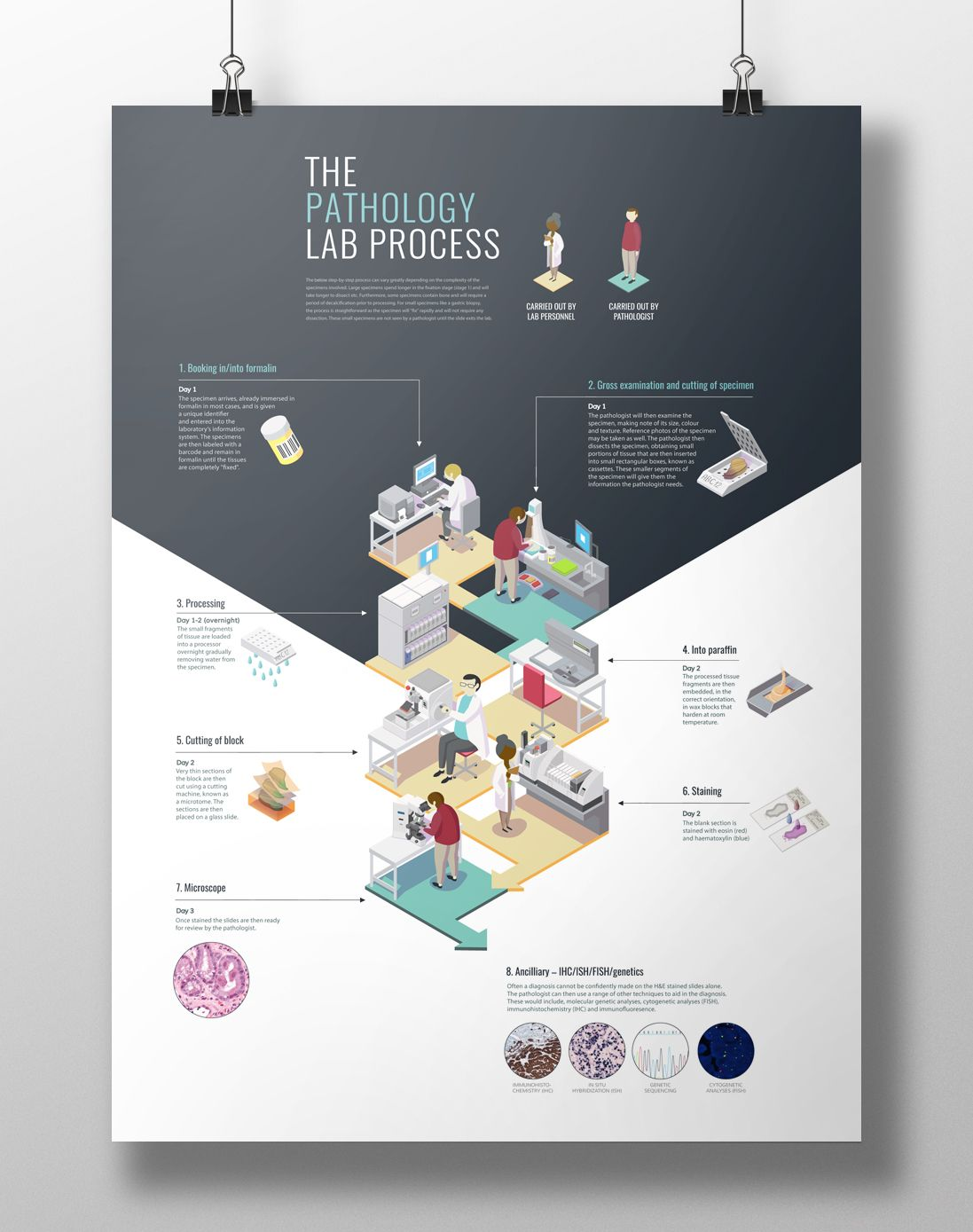 Poster design graphic design - Isometric Poster Design The Pathology Lab Process On Behance